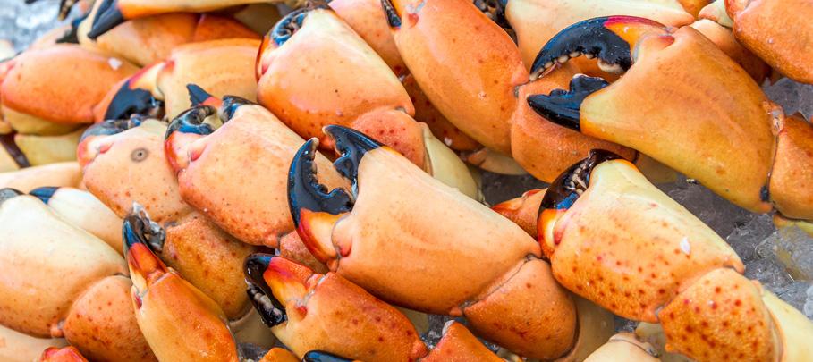 annapolis-crab-fest-2017